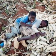 Malawi, una suora tra i tetti Portrait image